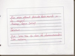 impresii dor de Bucovina (15)